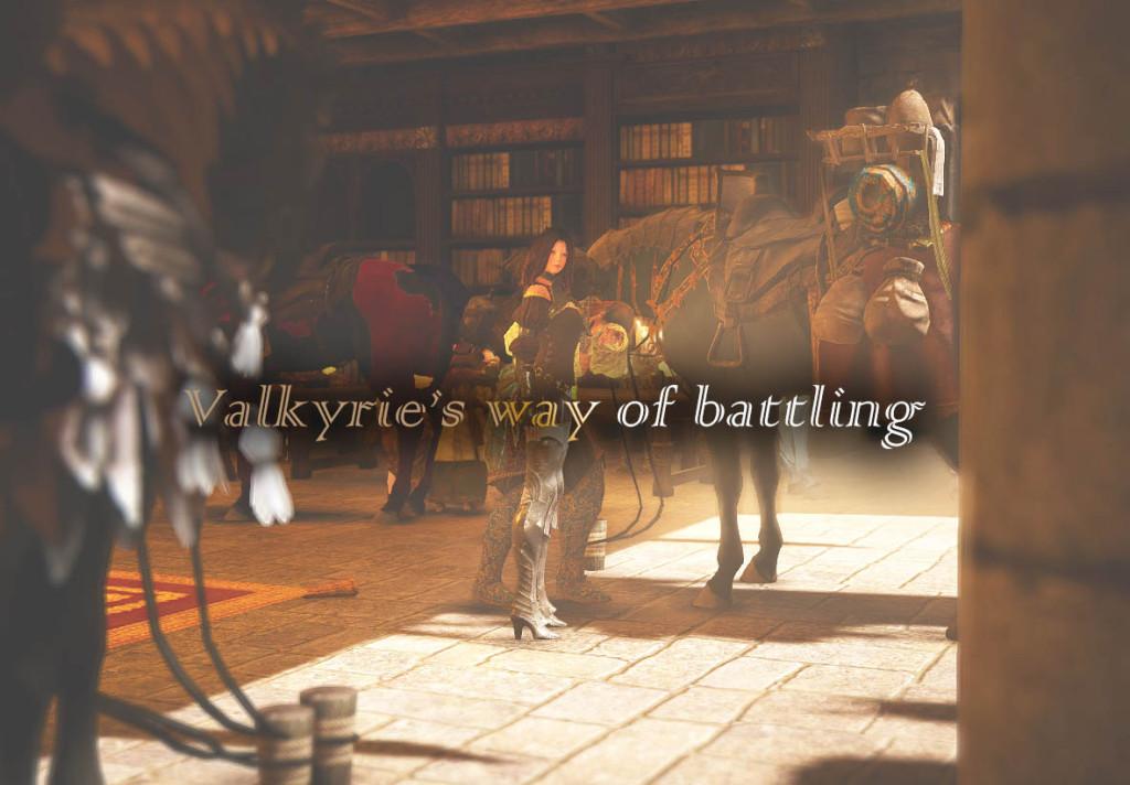ヴァルキリーの戦い方、教えます!?