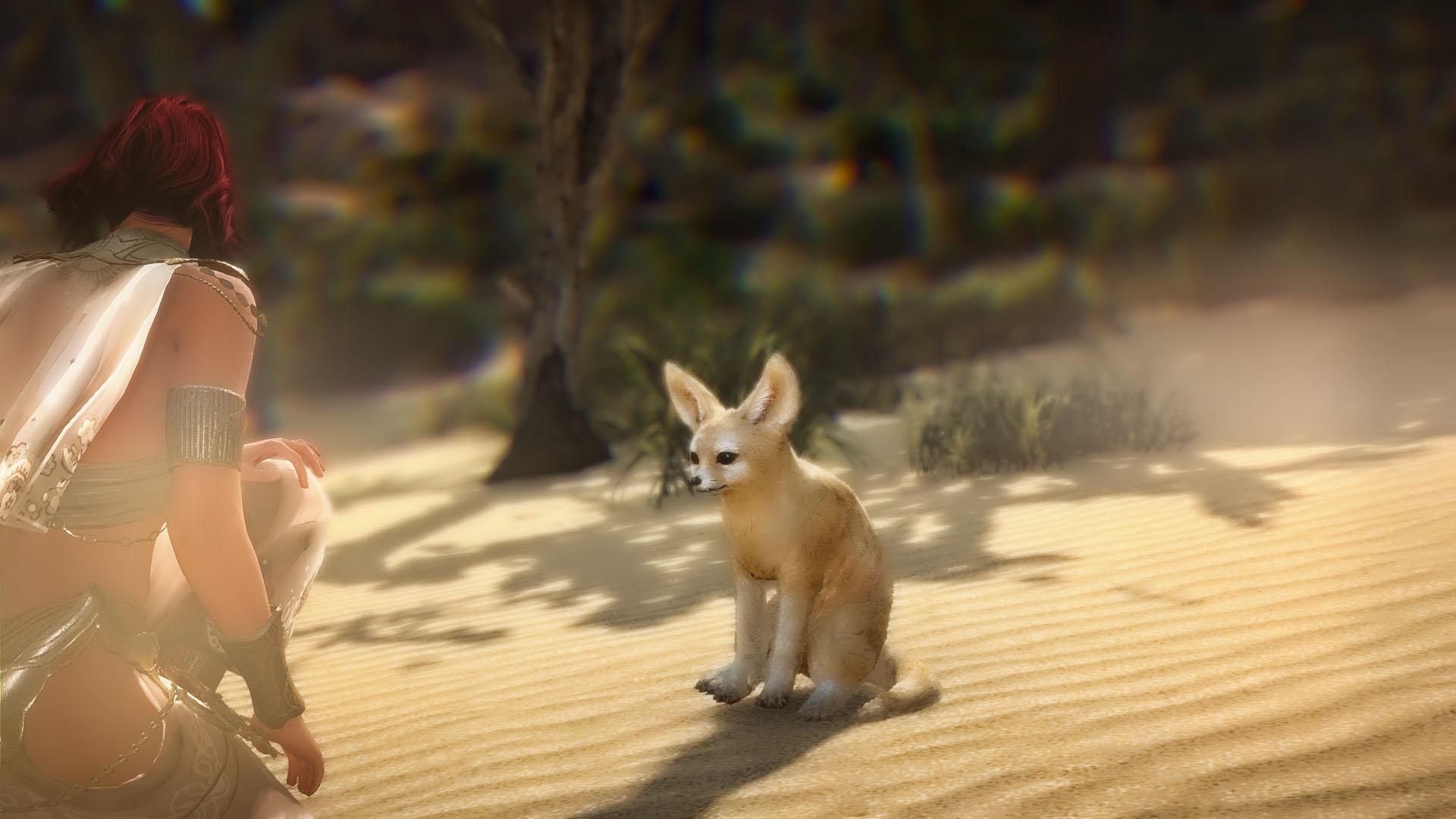 砂漠キツネペット