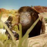 【黒い砂漠】バレンシア狩猟MOBの場所とイベントのヒント
