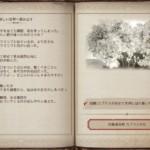 【黒い砂漠】カプラスの記録2,3巻(冒険日誌)