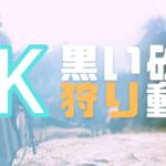 【黒い砂漠】4Kで狩り動画